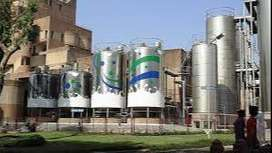 Open vacancies for fresher & experienced candidates in Milk Pvt Ltd