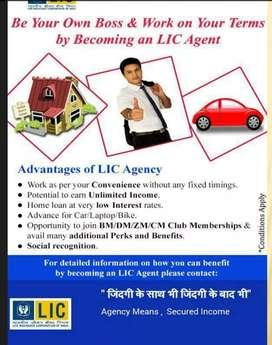 LIC Advisor