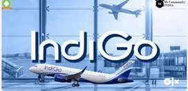 Apply Online in Indigo Airlines