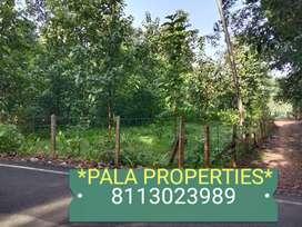 HOUSE PLOT SALE IN PALA VAIKAM HIGH WAY NEAR GOOD RESIDENTIAL AREA