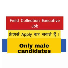 Mega opening field collection executive/document collection