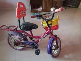 Duster bicycle to sell