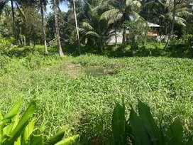 Dijual cpat tnh murah ada telaga 150 mtr dari jln raya mdo-btng lt 732