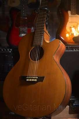 gitar cort sfx1ns fishman