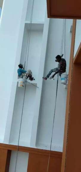 Wall painter required