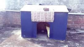 Dog home make PlyWood