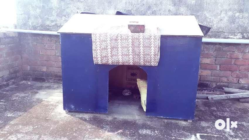 Dog home make PlyWood 0