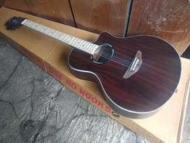 Gitar akustik new apx500ii maple