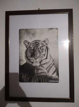 Tiger Realistic Pencil Drawing,wall art