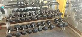Full gym set up