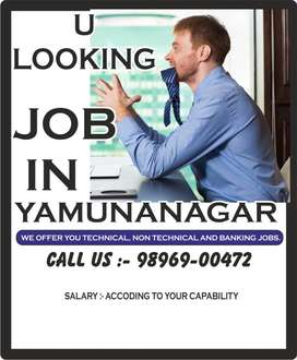 BANK & PVT LTD COMPANY REQUIRED