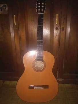 gitar yamaha c350