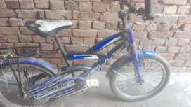 Plus cycle