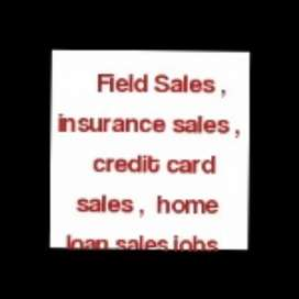 Fields sales executive in RANCHI