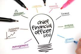 25 years experience chief financial officer