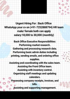 Back Office Executive