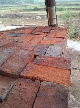 (Bebas Ongkir) Batu Bata Merah Ser Mojosari Berkualitas