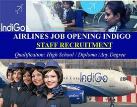 indigo global Airlines Hiring for tickets executive assistant  Airport