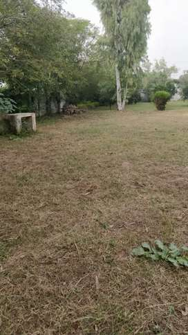 Plain land for rent,for poultry n other use
