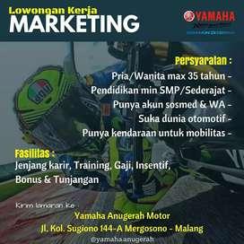 Lowongan marketing