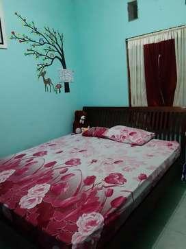 DIPAN JATI TUA ASLI + SPRING BED 180 CM