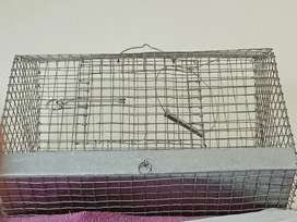 Bird Cage for sell 2