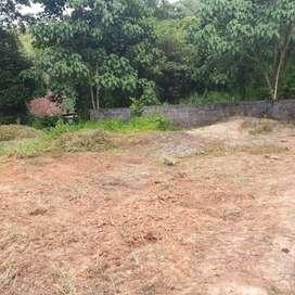 5 cent square plot Karakulam 12 lakhs