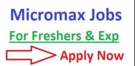 Micromax process hiring for CCE/ Back Office/ Field Executives in NCR.