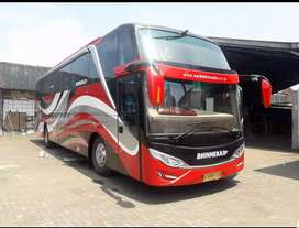 Jok bus _ elf elegan