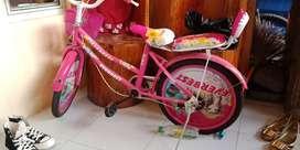 Sepeda anak merk everbest