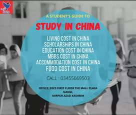 Scholarships for china for free study
