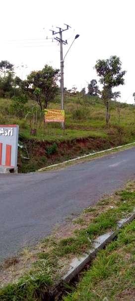 Disewakan Tanah di Bandung Cocok untuk AGROWISATA dan PERTANIAN