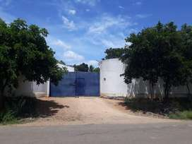 Cashew Factory for Sale