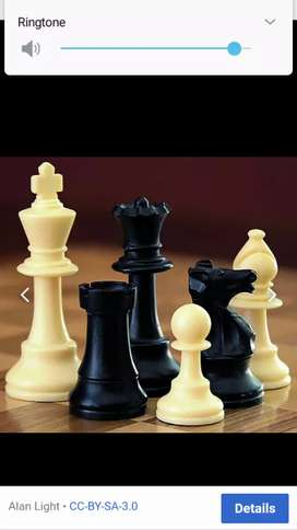 CHESS COACHING FOR SCHOOLS , INDIVIDUAL