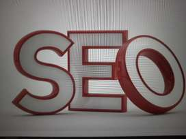 I will do SEO projects