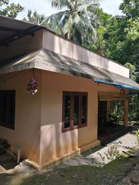House @Vallikala,Pullad, Pathnmthita