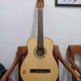 Gitar kapok 010