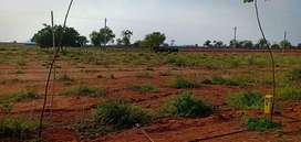 Farm plot for sale in Shadnagar