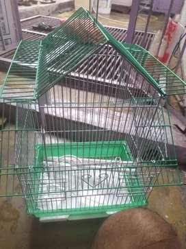 Case of birds