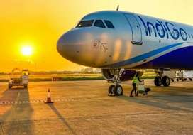 Urgent hiring for ground staff and security guard in surat Airport
