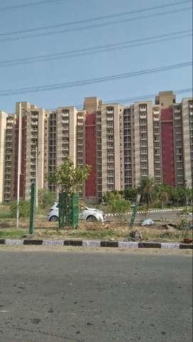 registry wale plot in gurgaon