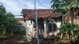 Rumah dan pekarangan di perum pemda lobar