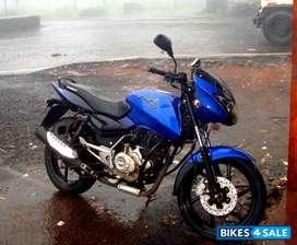 Urgent Sale Blue Bajaj Pulsar