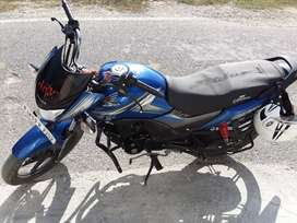 Honda shine sp