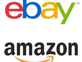 Experienced ebay & Amazon Product lister/Manager Required (Remote)