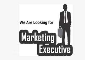 wanted sales and marketing executives, telemarketing persons