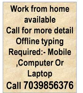 Online & Offline Typing work from home