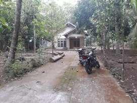 Rumah Dijual type 350/804 Sanden Gadingsari Bantul Yogyakarta