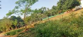 42.60. Site sale urs layout srirampura near ring road 60 ft road