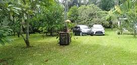 Jual tanah payangan bonus villa kayu full furnish